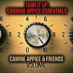 Carmine Appice Turn It Up: Carmine Appice Essentials