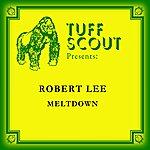 Robert Lee Melt Down