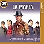 La Mafia Íconos 25 Éxitos