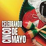 Banda Maguey Celebrando Cinco De Mayo