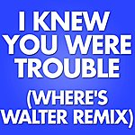Marco Polo I Knew You Were Trouble (Where's Walter Remix)