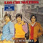 Los Chunguitos Vive A Tu Manera (Directo)