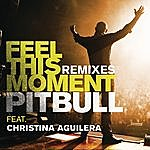 Pitbull Feel This Moment Remixes
