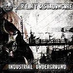 Remy Industrial Underground