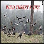 Boogie Man Wild Turkey Blues - Single