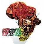 Sounds Of Blackness Evolution Of Gospel