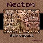 Necton Retrospect