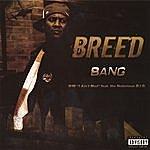 B. Reed Bang