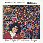 Michel Muhammad Ali Introduces Michel (First Flight Of The Gizzelda Dragon)