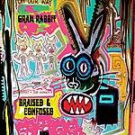 Gram Rabbit Braised & Confused