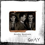 Gray Brushy Mountain: State Prison (A Murder Ballad Prison Song)
