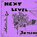 Skyline Next Level