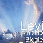 Levi Ain't No Biggie