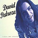 David Pedroza Call Me Crazy