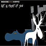 Moose Not In Front Of You