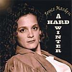 Joyce Marden A Hard Winter