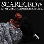 Scarecrow In My Jerusalem: Gethsemane