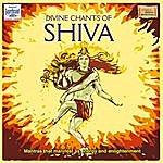Uma Mohan Divine Chants Of Shiva