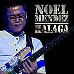 Noel Mendez Halaga