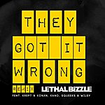 Lethal Bizzle They Got It Wrong (Feat. Krept & Konan, Kano, Squeeks, Wiley) [Remix]