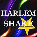 DJ Steven Harlem Shake