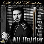 Ali Haider Dil Ki Baatein: The Ultimate Golden Collection, Vol. 1-2