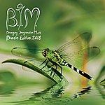 B.I.M. Basic Edition 2008