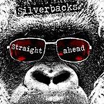 Silverbacks Straight Ahead