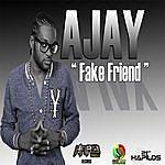 aJay Fake Friend - Single