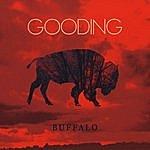 Gooding Buffalo