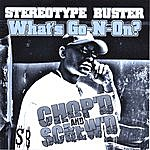 Stereotype Buster What's Go N On (Chopped & Screwed)