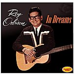 Roy Orbison In Dream