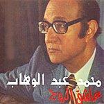Mohamed Abdel Wahab Acheq Errouh