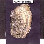 Open Eye Universe Journey Of Targon