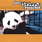 """Juri Panda Hug """"Jury's Out #3"""""""