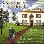 David Kamenir Pun Addict