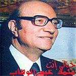Mohamed Abdel Wahab Hayati Inta