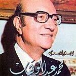 Mohamed Abdel Wahab Igri Igri