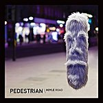 Pedestrian Hoyle Road Remixes