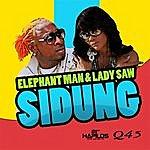 Elephant Man Sidung