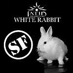 Latin Headhuntrz White Rabbit