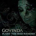 Govinda Plant The Seed Remixes
