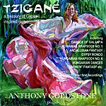 Anthony Goldstone Goldstone, A.: Tzigane (A Treasury Of Gypsy Inspired Music)
