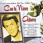 Adamo Cae La Nieve : La Cancion De Tu Vida