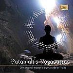 Vijay Prakash Patanjali Ke Yogasutras