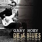 Gary Hoey Deja Blues