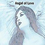 Peter Webb Angel Of Love