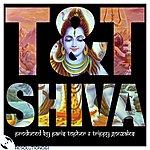 T&T Shiva