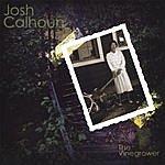 Josh Calhoun The Vinegrower