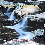 Jean-Claude Bensimon Perfect Harmony